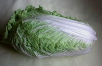 Cabbage_chinese