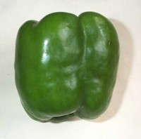 Peppers-green_bell